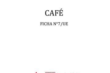 cafe-ficha-n7