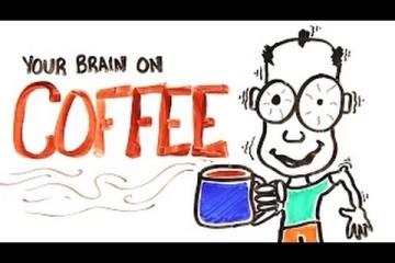 Conoce Cómo Funciona El Café En Tu Cerebro Exactamente