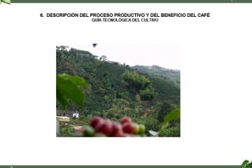 descripcion-del-proceso-productivo-y-del-beneficio-del-cafe