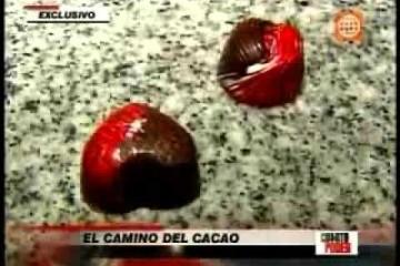 El camino del cacao