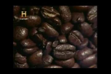Historia del Cafe 4 Robusto y Arabigo