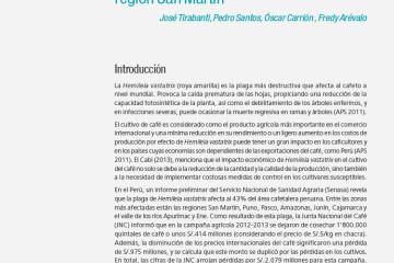 impacto-economico-de-hemileia-vastatrix-en-11-caserios-del-ambito-de-influencia-del-proyecto