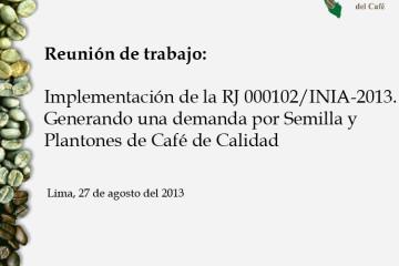 implementacion-de-la-rj-000102inia-2013
