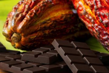 promperu-cacao