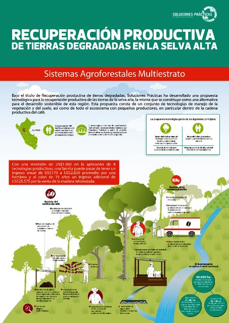 Infografía: Recuperación productiva de tierras degradadas en la selva alta