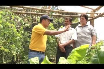 Suelos, bosques, café y comunidad, una relación sostenible