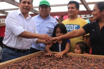 ollanta-cacao-617x351