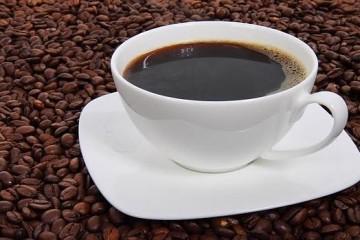 cafe--620x349