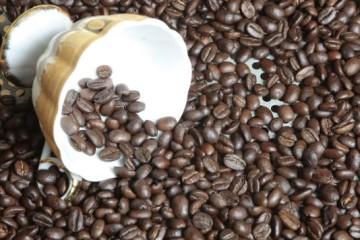 FELIX MARIN NOS PRESENTA EL EL CAFE GEISHA