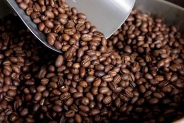 Cafe-peruano-Andina-1-617x351