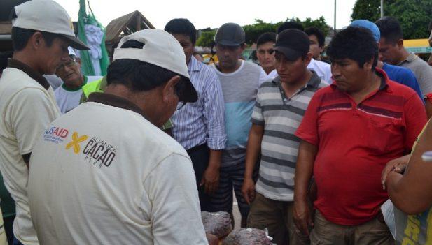i-festival-del-cacao-en-aucayacu-3-617x351