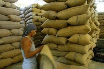 Exportacion-del-cafe-peruano-aumento-un-25-en-el-2016-Foto-El-Comercio-617x347