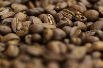JNC: Lluvias generan sobrecostos y retrasan las exportaciones del café