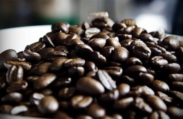 Los científicos que luchan para salvarnos de un mundo sin café