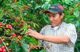 Raúl Mamani: El hombre detrás del mejor café del mundo