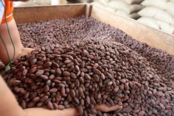 Minagri lanzará VIII edición del Salón del Cacao y Chocolate 2017