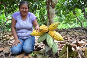 Perú es segundo productor de cacao orgánico en el mundo, según Appcacao