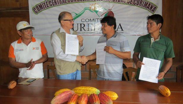 Ucayali: Cacao de Curimaná se exportará a Italia