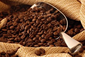 USDA prevé mayor producción de café en Perú y la India ¿cuánto crecerá este año?