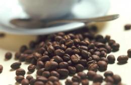 Café peruano busca lograr este año US$ 1.000 mlls en exportaciones