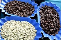Pasco: café de Villa Rica recibe 12 premios de los 23 obtenidos por Perú en París