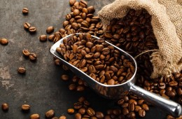 Café tostado peruano logró 23 galardones en concurso internacional