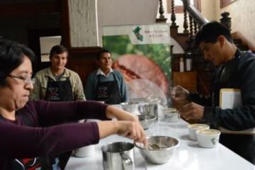 Taza de Excelencia Perú: Cafés ganadores se subastarán a precios especiales