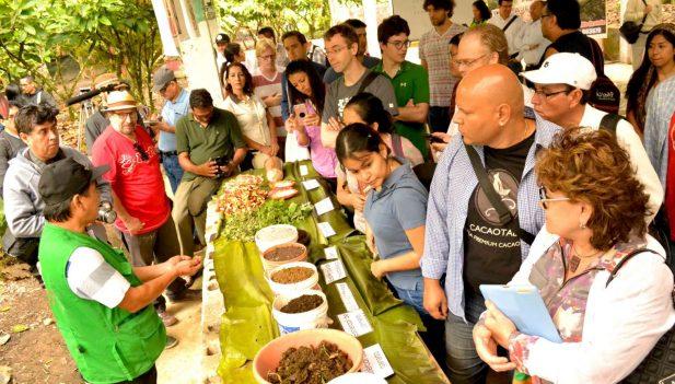Delegación internacional recorrió ruta turística de cacao y chocolate de Huánuco