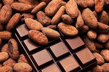 Lima será sede del VIII Salón del Cacao y Chocolate