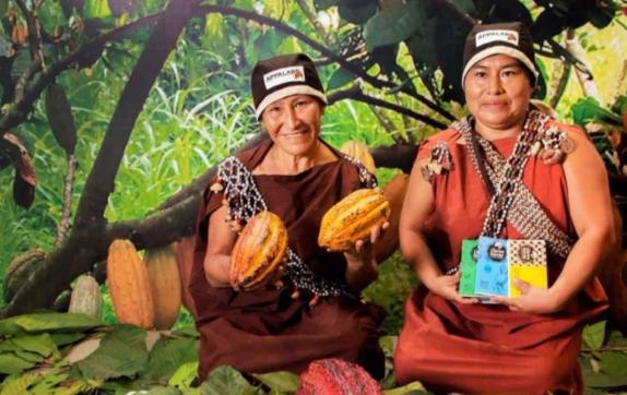 Productoras cacaoteras