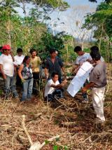 Proyecto café San Martín