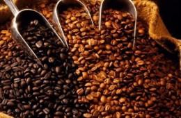 Granos de café - variedades