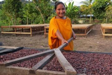 Cacao vraem