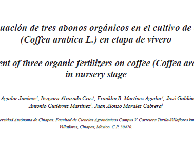 Evaluación de tres abonos orgánicos en cultivo de café