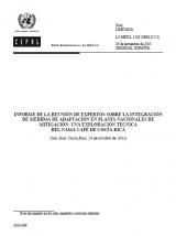 Informe integración medidas de adaptación en planes nacionales de mitigación