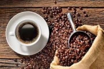 Preparación de Café con el Método de Prensa Francesa – TvAgro