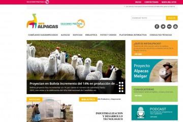 portal sobre alpacas