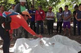 Tocache: Unas 850 familias son capacitadas en preparación y cuidados del cacao