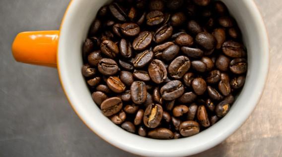 Exportaciones cafetaleras aumentan en febrero