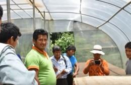 Testimonio Modesto Vicente-Cacao