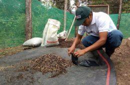 Moyobamba: inician evaluación para certificar a productores de café como talentos rurales