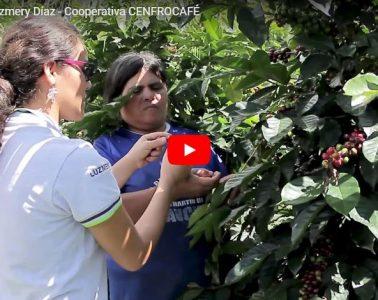 Testimonio Luzmery Díaz - Cooperativa CENFROCAFÉ