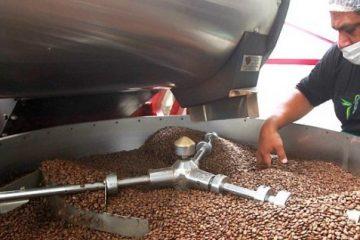 El café, un comercio poco justo en período de crisis